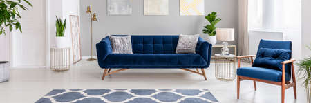 Real photo of a modern living room interior with a blue sofa, armchair, plants and patterned rug Stock Photo