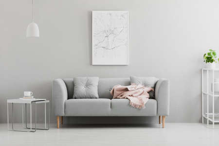 Poster above grey sofa with pink blanket in living room interior with white lamp and plant. Real photo Stockfoto