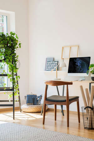 Wooden chair at desk with desktop computer in white home office interior with plant on ladder. Real photo 版權商用圖片