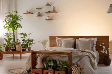 Plants in a modern bedroom interior with a comfy bed decorated with pillows and empty wall in the background. Place your graphic Archivio Fotografico