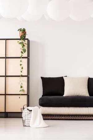 Plant op scherm naast zwarte bank met kussens in minimaal en wit woonkamerinterieur met mand. Echte foto Stockfoto