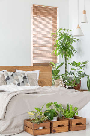Real photo of a bright bedroom interior with plants, window blinds and bed Archivio Fotografico - 108119402