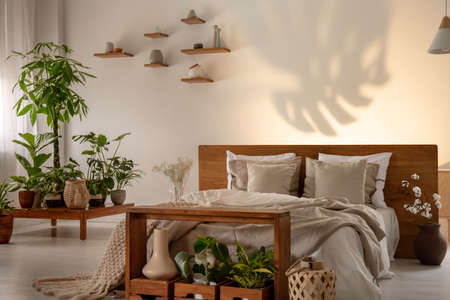 Shadow of a leaf on a wall in a botanical bedroom interior with a comfy double bed. Real phot Archivio Fotografico - 108119412