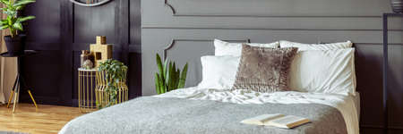 Panorama of a monochromatic bedroom interior with golden decorations, plants and molding on a gray wall Stock Photo