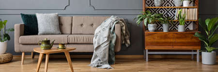 Lounge with pillows and blankets standing next to wooden vintage cupboard with books and plants in grey living room interior with wainscoting on wall