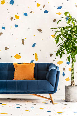 Living room interior with a navy blue sofa green plant in a concrete planter and a white wall with a colorful lastrico pattern. Real photo.