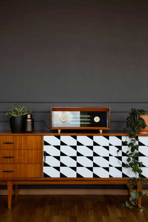 Fresh plants and vintage radio placed on wooden cupboard with pattern in real photo of dark room interior with empty wall. Paste your painting here