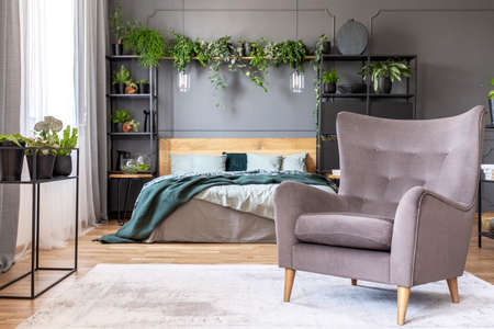 Comfy armchair in front of a double bed in a grey bedroom interior decorated with plants