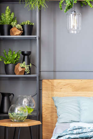 Close-up of shelves with plants and glass bowls next to a bed