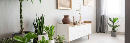 Ceramic and clay vases on a white, wooden cabinet with drawers and green plants in a gray living room interior with natural light Stock fotó