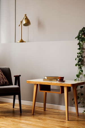 Armchair next to wooden table in grey living room interior with plant and gold lamp. Real photo