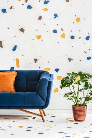 Plant naast blauwe bank met oranje kussen in kleurrijk woonkamerinterieur met behang. Echte foto Stockfoto