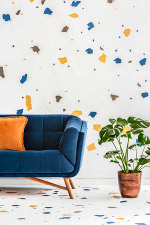 Plant next to blue sofa with orange pillow in colorful living room interior with wallpaper. Real photo