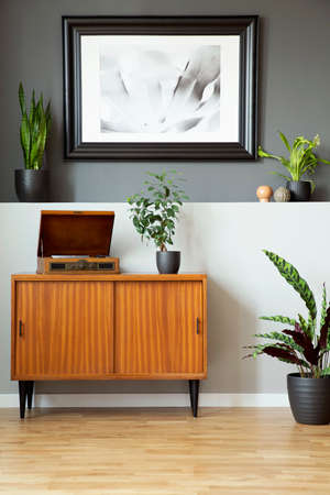 Retro cabinet with phonograph, plants and painting on the wall in a living room interior. Real photo