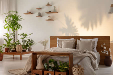 Plants next to wooden bed with pillows in botanic bedroom interior with shadows. Real photo Archivio Fotografico - 108852396
