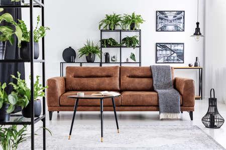 Deken op bruin lederen bankstel in woonkamer interieur met posters, planten en tafel. Echte foto Stockfoto