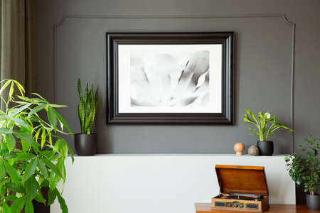 Close-up of a wall with a painting in a black frame, plants and phonograph on a desk