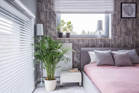 Real photo of a grey bedroom interior with a bed, pillows, big plant and window blinds Reklamní fotografie