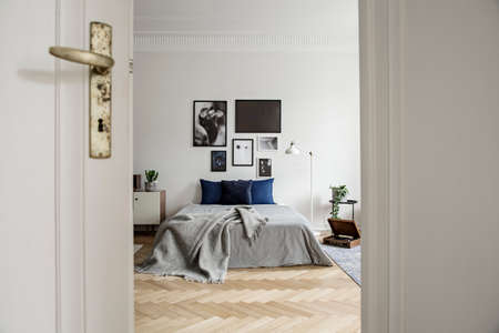 View through open door into a spacious and natural bedroom interior with hardwood floor, art gallery and minimalist decor