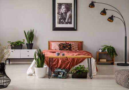 Planten en lamp in grijs slaapkamerinterieur met poster aan de muur boven het rode bed. Echte foto Stockfoto