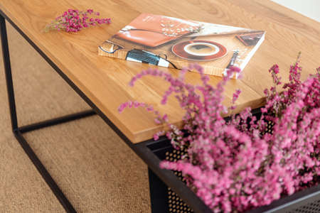 Colorful magazine and heather on the wooden table in stylish living room of modern apartment, real photo