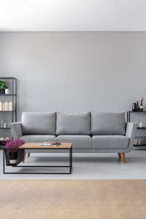Vertical view of big grey sofa and coffee table in scandinavian living room, real photo with copy space on the wall
