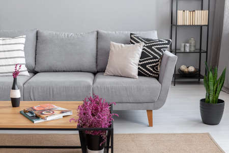 Magazines and heather on the wooden table near comfortable grey sofa with pillows, real photo with copy space on the wall