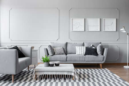 Elegant living room with two comfortable grey sofas with pillows and graphic on the wall, real photo with copy space and mockup