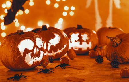 Real photo of carved pumpkins with candles and artificial spiders placed on the floor