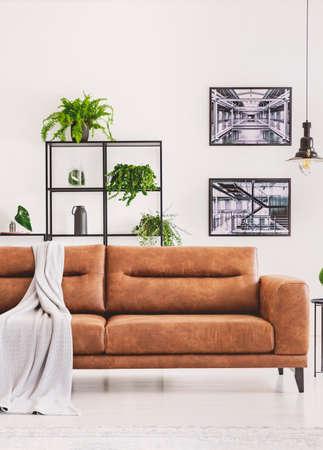 Grijze deken op bruine leren bank in licht modern appartement met industriële posters aan de muur en planten op de plank
