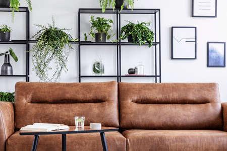 Close-up van wenkbrauw lederen bank in luxe woonkamer. Water, boek en kaarsje op tafel ernaast, potten met groene plant erachter