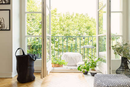 Lot of green plants and open balcony door in modern apartment, real photo