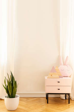 Real photo of an empty wall in a kid room interior with a cabinet and plant. Place your painting