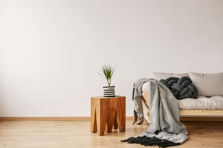 Plan in striped pot on wooden table next to scandinavian sofa with knot pillow and blanket, real photo with copy space on the empty wall Reklamní fotografie - 111119880