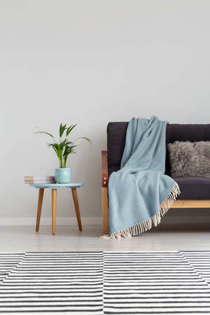 Striped carpet on the floor of elegant living room with comfortable sofa with blue blanket, real photo on the empty grey wall