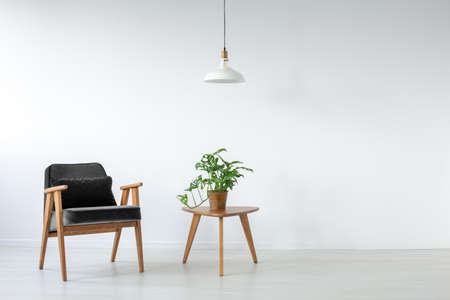 Black velvet retro armchair next to small coffee table with green plant in pot, real photo with copy space on the empty white wall