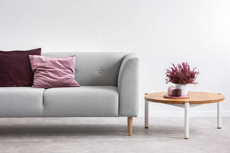 Heather on wooden table next to grey settee with purple pillows in grey apartment interior. Real photo Stock Photo