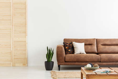 Pillows on brown leather sofa next to plant in white flat interior with wooden screen. Real photo