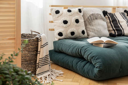 Books on scandinavian futon with pillows in elegant bedroom interior, real photo