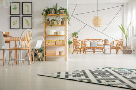 Patterned carpet on white wooden floor and urban jungle on wooden shelf in classy living and dining room interior with rattan sofa and armchairs and wooden table with stylish chairs