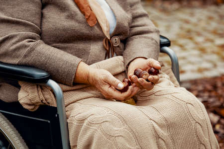 Close up of senior lady on wheelchair with chestnuts in her hands 스톡 콘텐츠