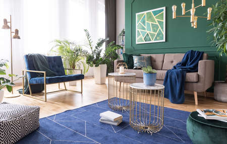 Green and blue living room interior design with rug, coffee tables and comfortable furniture Stok Fotoğraf