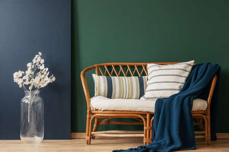 Natural wicker settee with striped pillows and blanket next to white flower in glass vase, real photo with copy space on empty green and blue wall