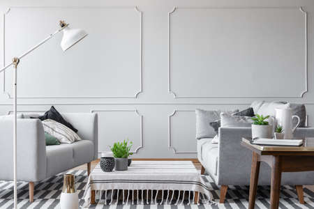 Two sofas in a simple living room interior with a low coffee table and wall molding. Real photo