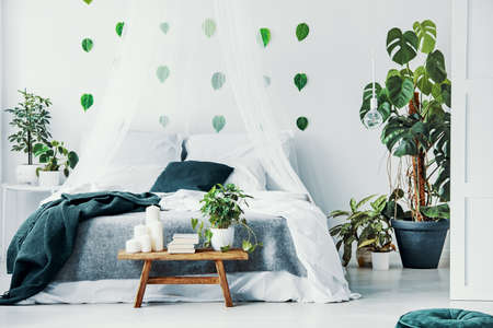 Double bed with white and emerald green bedding, grey blanket and canopy in classy bedroom interior with plants and stylish furniture