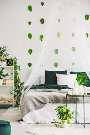 Double bed with white and green bedding, grey blanket and canopy in chic bedroom interior with urban jungle Stock fotó