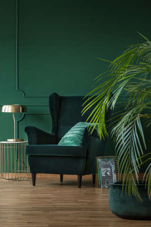 Copy space on empty dark green wall of stylish living room with comfortable armchair and coffee table