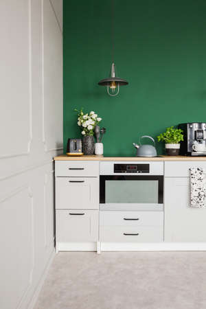 Green wall with copy space in bright kitchen interior