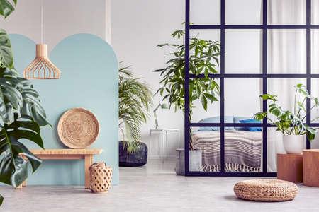 Selva urbana en el interior del apartamento moderno de planta abierta con pared de parteluces