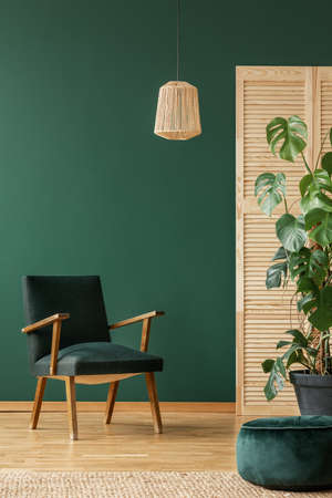 Rattan armchair above retro dark green armchair, copy space on the empty green wall
